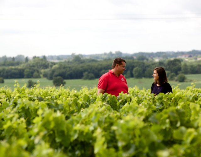Mouton Cadet red wine Bordeaux France